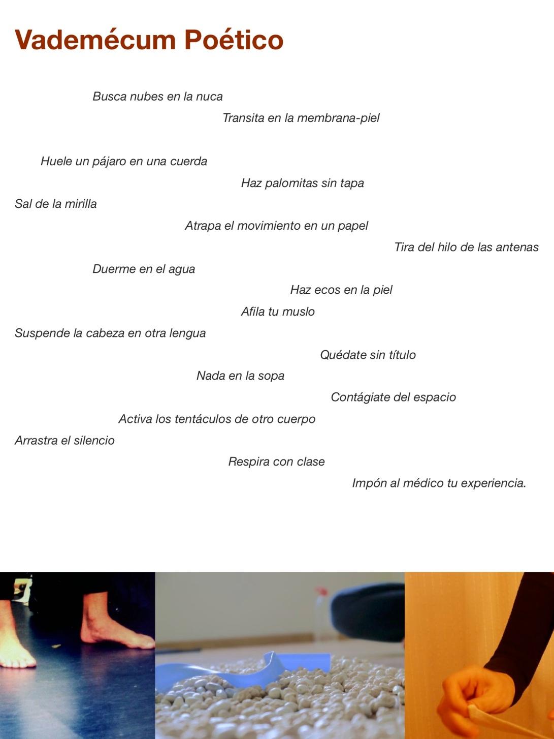vademecum poetico 4